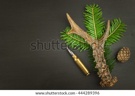 Roe deer antler and needles. Sales of hunting needs. Invitation to the hunting season. Advertising on hunting cartridges. Diploma for hunters. Place for your text. - stock photo