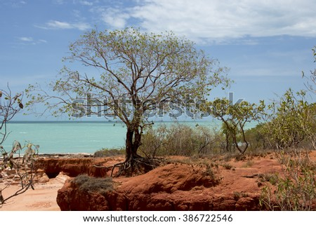 Roebuck Bay in Broome , North Western Australia , comprised of inter tidal mudflats abundant in marine life with  big tides, mangroves, red cliffs and aquamarine waters,  is a wondrous landscape .