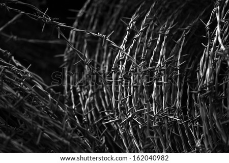 Roll of barbed Wire - stock photo