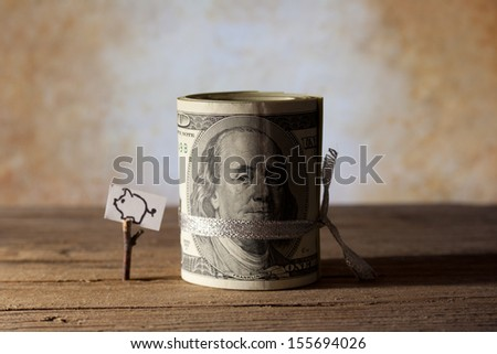 Roll of One Hundred Dollar and drawing piggy banks. - stock photo