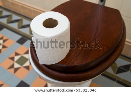 Roll of toilet paper on the toilet