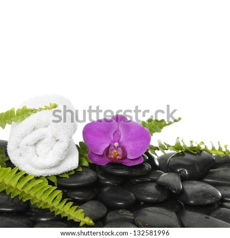 roller towel with green fern and orchid on pebbles - stock photo
