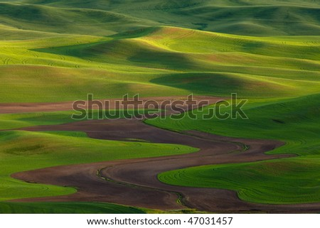 Rolling Green Hills at Sunset - stock photo
