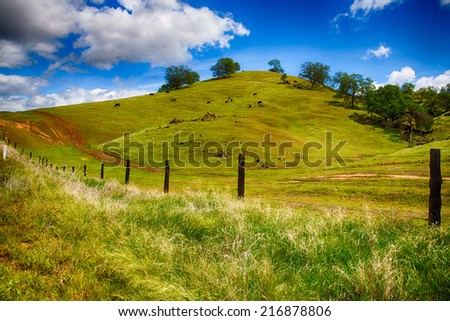 Rolling Green Hills of a ranch outside Fresno, California on bright spring day. - stock photo