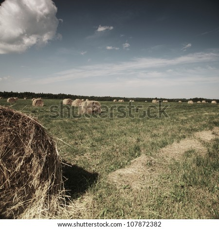 Rolling haystack on summer field - stock photo