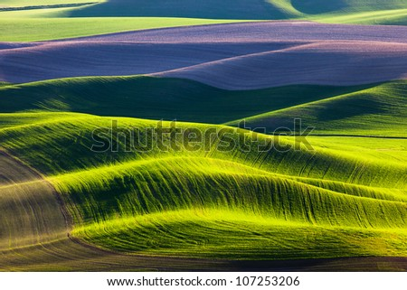 Rolling Hills and Fields - stock photo