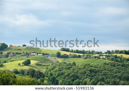 Rolling hills in the summer. Stajerska, Slovenia - stock photo