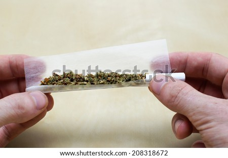 rolling marijuana joint with twoo hands and paper - stock photo