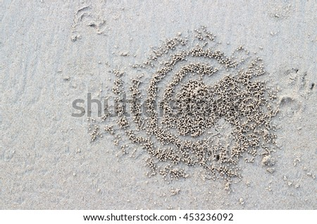 Rolling sand balls by crab the nature abstract pattern - stock photo