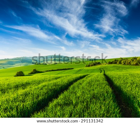 Rolling summer landscape with green grass field under blue sky