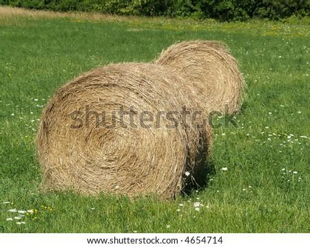 rolls of hay bales - stock photo
