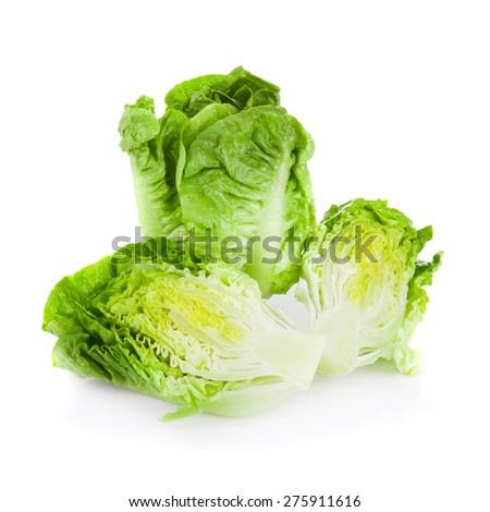 Romain Lettuce isolated on a white background - stock photo