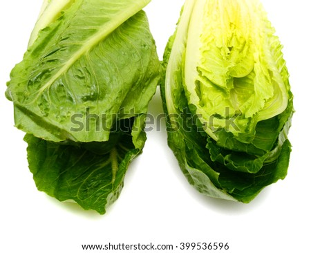 romaine lettuce isolated on white