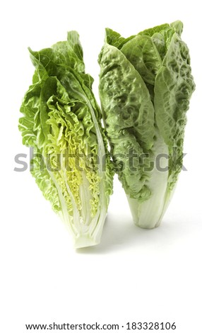 romaine lettuce on white backgraund - stock photo
