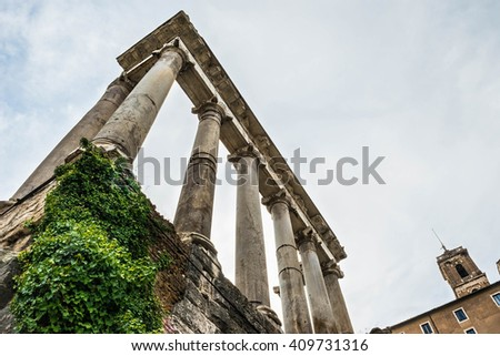 Roman Forum detail in Rome, Italy