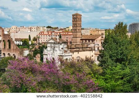Roman forum in Rome, Italy. - stock photo