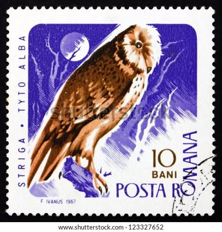 ROMANIA - CIRCA 1967: a stamp printed in the Romania shows Barn Owl, Tyto Alba, Bird of Prey, circa 1967 - stock photo