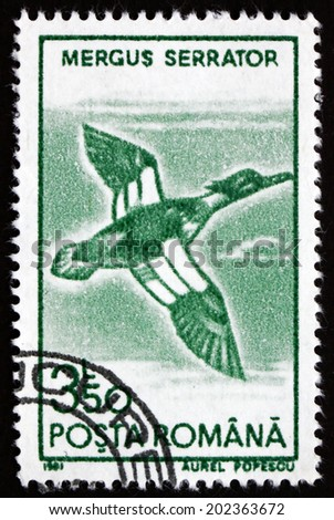 ROMANIA - CIRCA 1991: a stamp printed in the Romania shows Red-breasted Merganser, Mergus Serrator, Bird, circa 1991