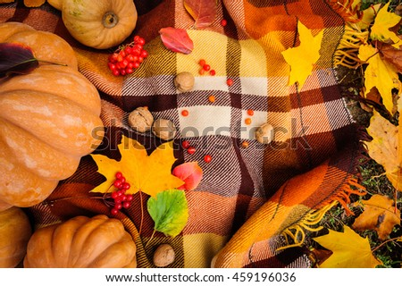 Romantic autumn still life with blanket, pumpkins, nuts and leaves, top view