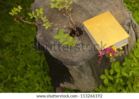 Romantic book with flowers in garden - stock photo