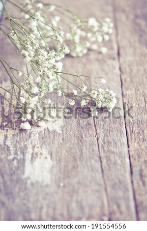 Romantic floral frame with Gypsophila - stock photo