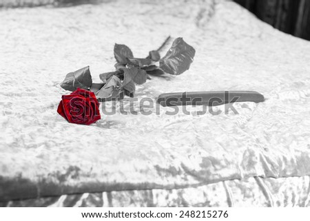 Romantic red rose and gift lying on a bed in a greyscale image with selective color to the rose symbolising love for Valentines Day - stock photo