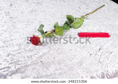 Romantic red rose and gift on a white counterpane on a bed, a surprise for a sweetheart on Valentines day or an anniversary - stock photo
