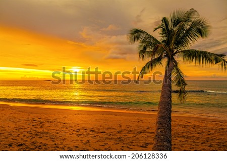 Romantic sunset - stock photo