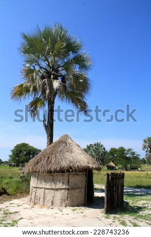 Rondavel with Palm Tree in Boro, Botswana in Okavango Delta - stock photo