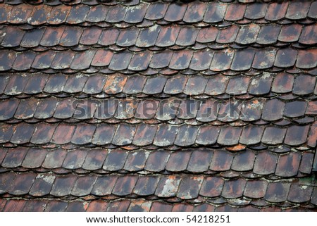 Roof after rainfall