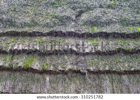 Roof of straw - stock photo