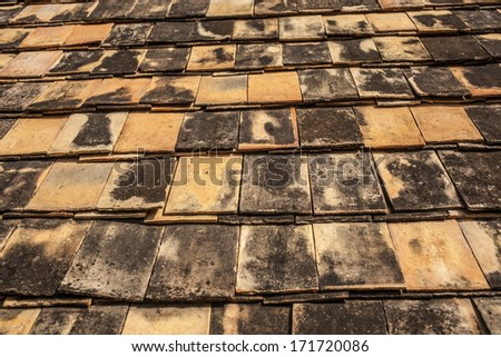 roof texture, texture of wood temple roof in Northern Thai style