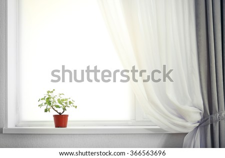 Room with curtain and window and plant on the windowsill - stock photo