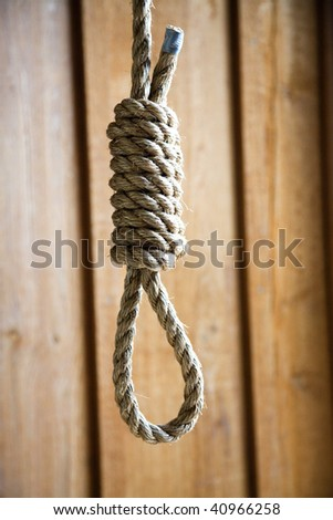 Rope Hangman's Noose in front of natural wood plank background - stock photo