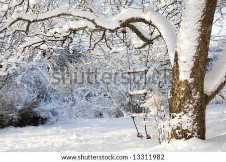 Rope ladder in snow
