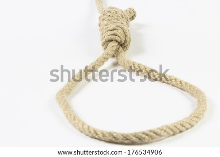 Rope with hangman's noose isolated on white background - stock photo