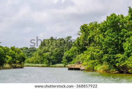 Ropotamo river in bulgaria is one of the most popular tourist attraction in burgas area especially for ist river cruises reaching an estuary of the black see and possibility to see egrets on the way.