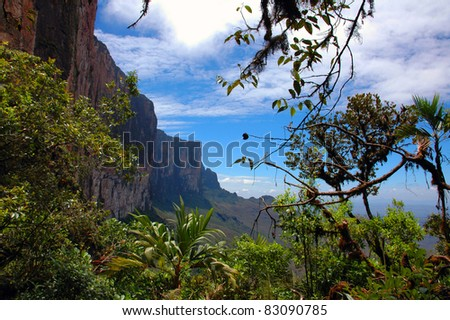 Roraima Table Mountain, Venezuela - stock photo