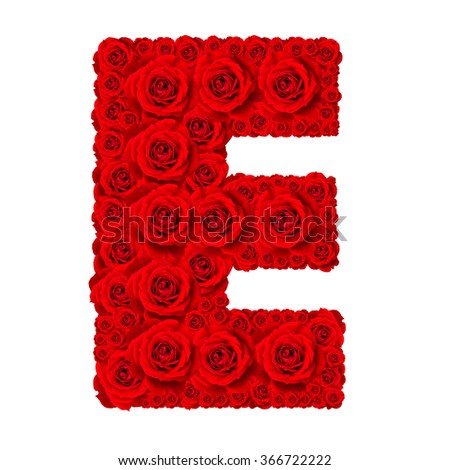 Rose alphabet set - Alphabet capital letter E made from red rose blossoms isolated on white background - stock photo