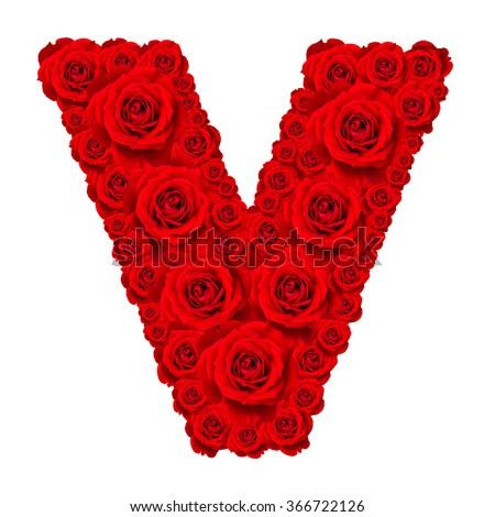 Rose alphabet set - Alphabet capital letter V made from red rose blossoms isolated on white background - stock photo