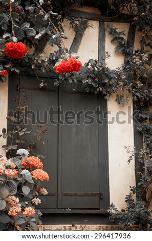 Rose and hydrangea bushes overgrowing half timbered house. French countryside. Aged photo. Black and white. A game of light and shadow. - stock photo
