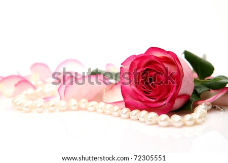 Rose and pearls - stock photo