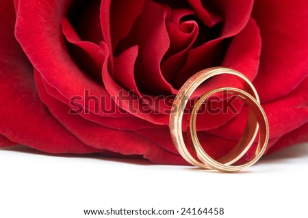 Rose and wedding rings