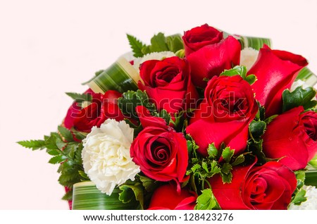 Rose bouquet with red background