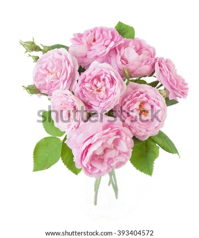 Rose flowers bunch isolated on white background