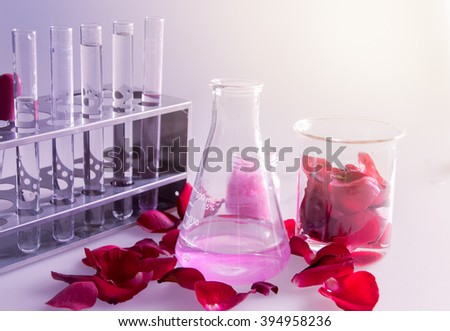 Rose for analysis in laboratory - stock photo