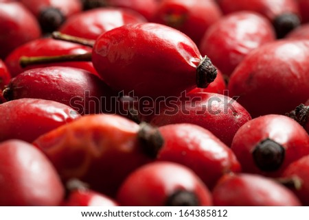 Rose hip fruits as a background - stock photo
