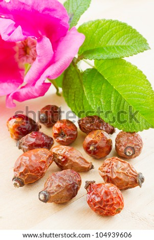 rose hips berry and rose-hip flower - stock photo