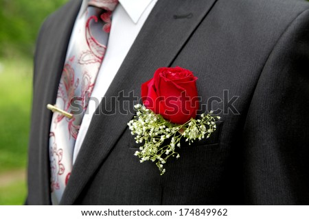 Rose in a buttonhole of the groom close up - stock photo
