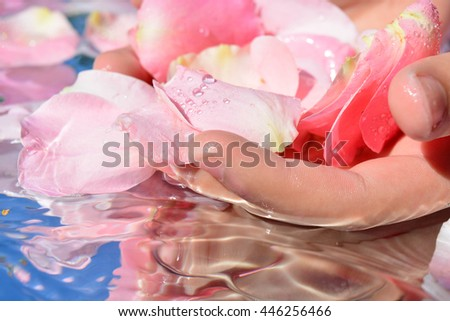 Rose petals and hand, reflection, pure water